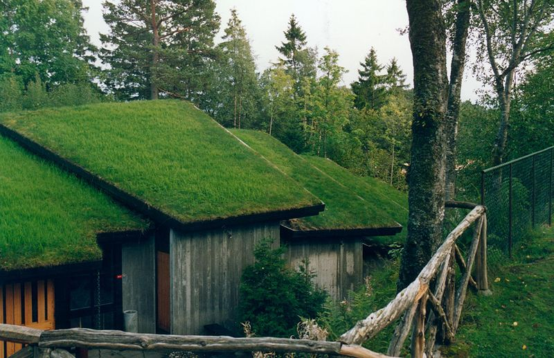 Norwegian grass roofs date back to the time of the Vikings. Image: Jshovland.