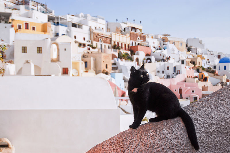 From the Greek island of Santorini. Image: Mstyslav Chernov.