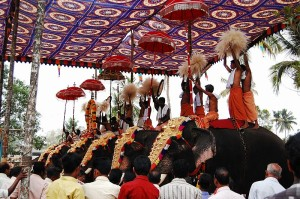 Elephants are included for Pooram in the state of Kerala, India. Image: Challiyan.