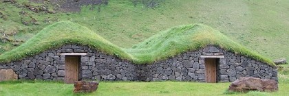 grass_roofs